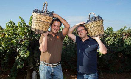 I vini veri del Salento di Michele Calò & Figli