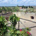 Cupertinum a Copertino: le vigne del Salento che fanno storia